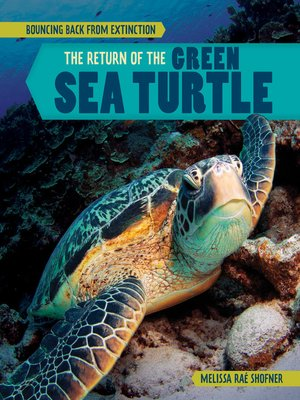 cover image of The Return of the Green Sea Turtle