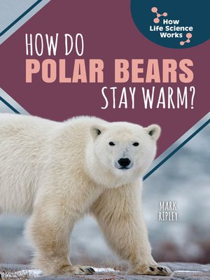 cover image of How Do Polar Bears Stay Warm?