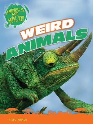cover image of Weird Animals
