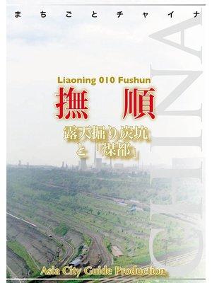 cover image of 遼寧省010撫順 ~露天掘り炭坑と「煤都」