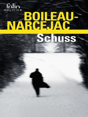 cover image of Schuss