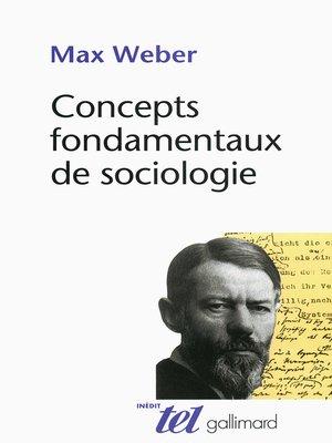 cover image of Concepts fondamentaux de sociologie