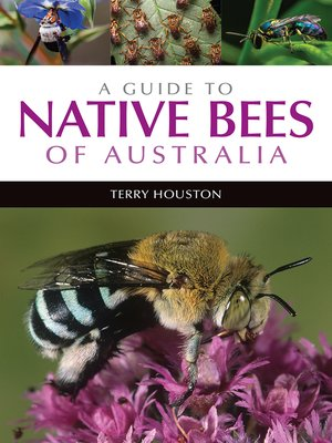 cover image of A Guide to Native Bees of Australia