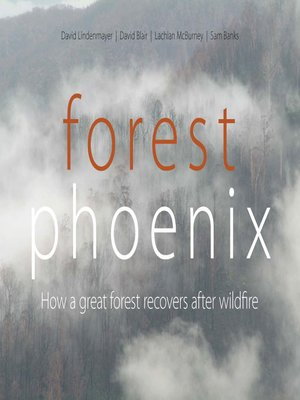 cover image of Forest Phoenix
