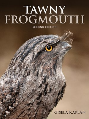 cover image of Tawny Frogmouth