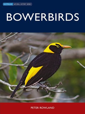 cover image of Bowerbirds