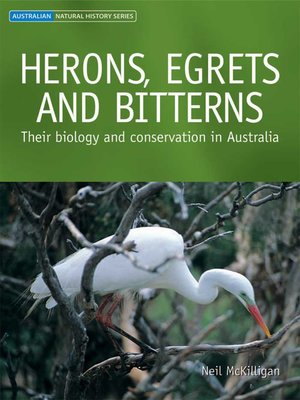 cover image of Herons, Egrets and Bitterns