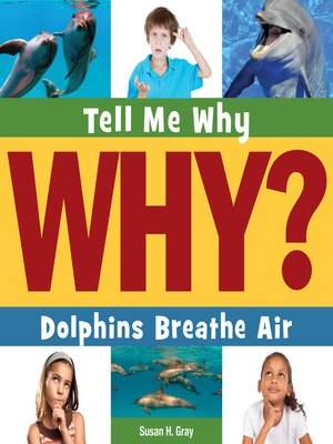 cover image of Dolphins Breathe Air
