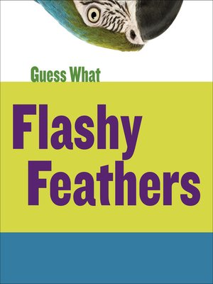 cover image of Flashy Feathers: Macaw