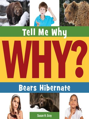 cover image of Bears Hibernate