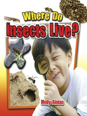 cover image of Where do insects live?