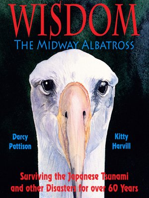 cover image of Wisdom, the Midway Albatross