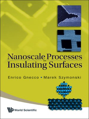 cover image of Nanoscale Processes On Insulating Surfaces
