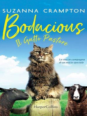 cover image of Bodacious--Il gatto pastore