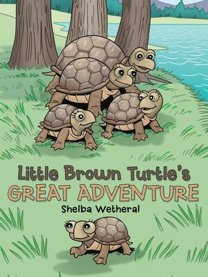 cover image of Little Brown Turtle's Great Adventure