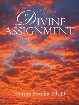 cover image of Divine Assignment