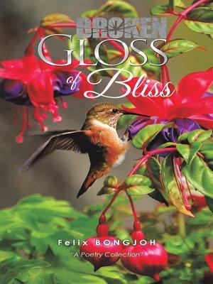 cover image of Broken Gloss of Bliss