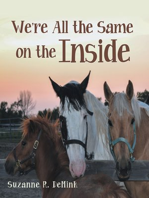 cover image of We're All the Same on the Inside