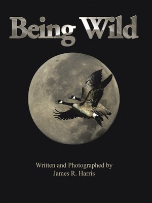 cover image of Being Wild