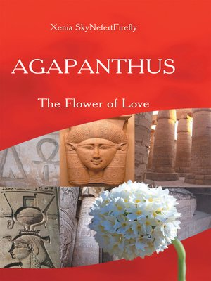 cover image of Agapanthus
