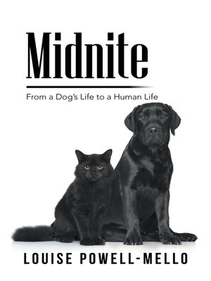cover image of Midnite