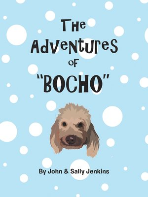 cover image of The Adventures of Bocho
