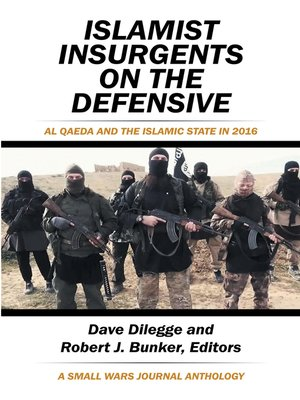 cover image of Islamist Insurgents on the Defensive