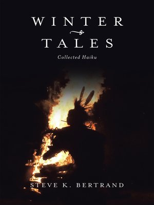 cover image of Winter Tales