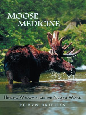 cover image of Moose Medicine