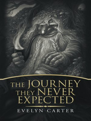 cover image of The Journey They Never Expected