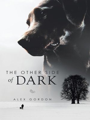 cover image of The Other Side of Dark