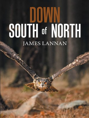 cover image of Down South of North