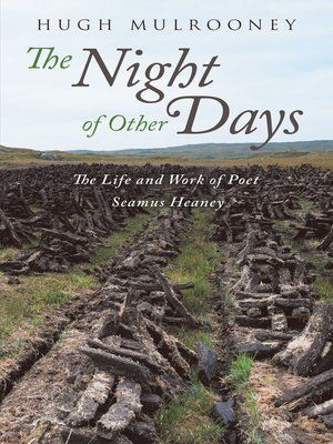 cover image of The Night of Other Days