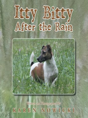 cover image of Itty Bitty After the Rain