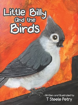 cover image of Little Billy and the Birds