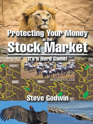 cover image of Protecting Your Money in the Stock Market