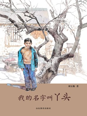 cover image of 我的名字叫丫头
