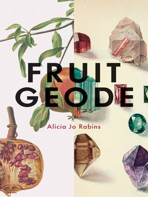 cover image of Fruit Geode