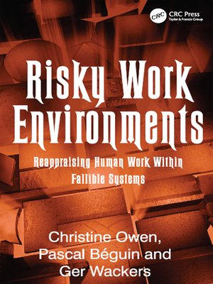 cover image of Risky Work Environments