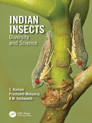 cover image of Indian Insects