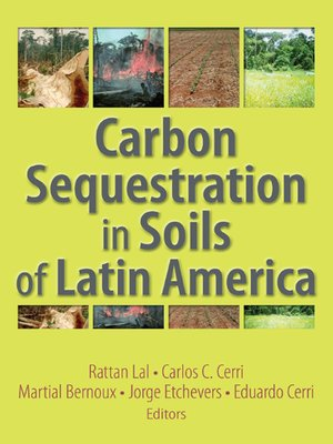 cover image of Carbon Sequestration in Soils of Latin America
