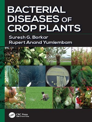 cover image of Bacterial Diseases of Crop Plants