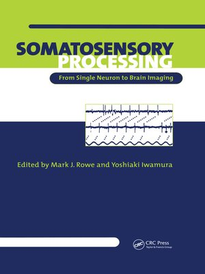 cover image of Somatosensory Processing
