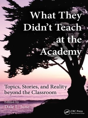 cover image of What They Didn't Teach at the Academy