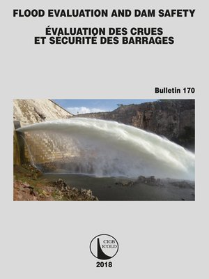 cover image of Flood Evaluation and Dam Safety