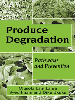 cover image of Produce Degradation