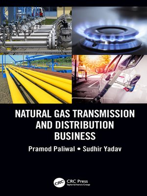 cover image of Natural Gas Transmission and Distribution Business