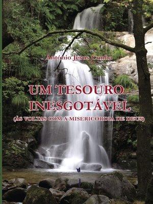 cover image of Um Tesouro Inesgotável