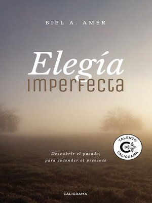 cover image of Elegía imperfecta