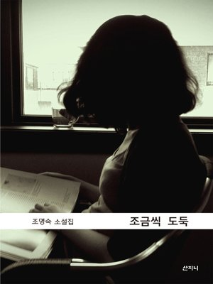 cover image of 조금씩 도둑